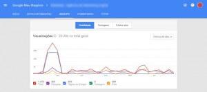 Google Meu Negócio Insights